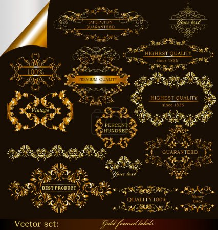 Collection of vector gold-framed labels premium and best quality