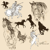 Vector set of detailed hand drawn horses for design