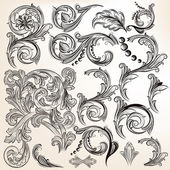 Vector set of calligraphic vintage swirls for design