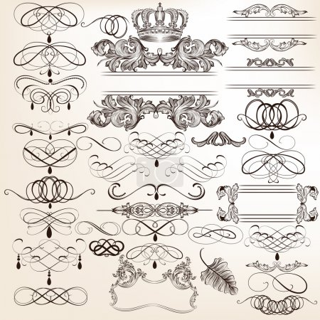 Vector set of calligraphic elements for design. Ca...