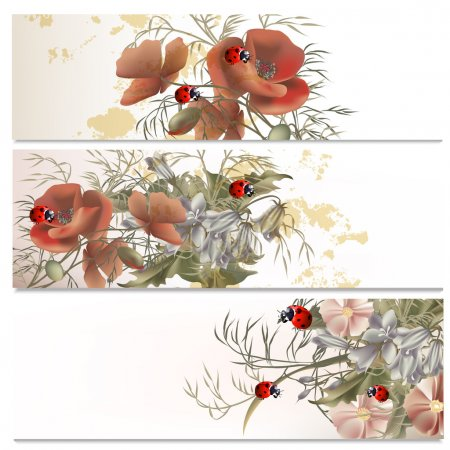 Illustration for Set of floral brochures with field flowers for design - Royalty Free Image
