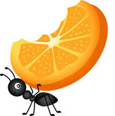 Scalable vectorial image representing a ant carrying orange slices isolated on white