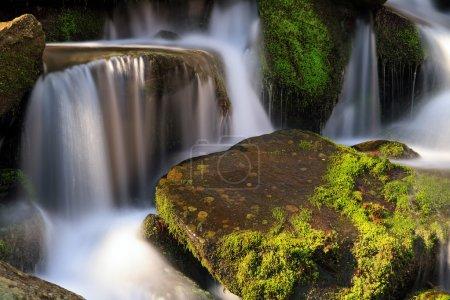 Smoky Mountains Cascade