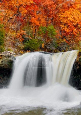 Photo pour L'eau vive plonge sur une corniche calcaire avec un feuillage d'automne brillant dans les bois derrière. Photographié à Upper Cataract Falls dans l'Indiana . - image libre de droit