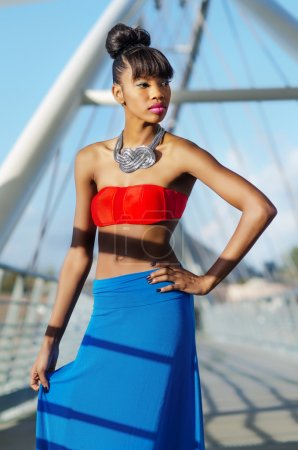 Beautiful African American Fashion model
