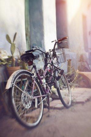 Bike resting in rustic home