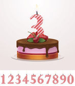 Vektorové narozeninový dort se svíčkou