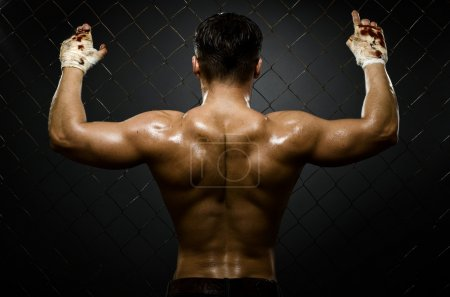 Photo for Horizontal photo muscular young guy street-fighter, athletic back, hard light - Royalty Free Image