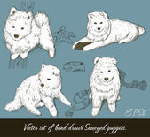 Vintage set with samoyed puppies