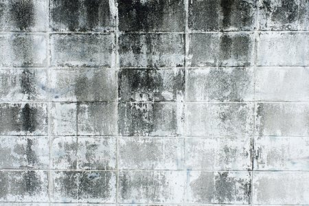 Aged, super-grunge concrete wall in dark, cold color tones