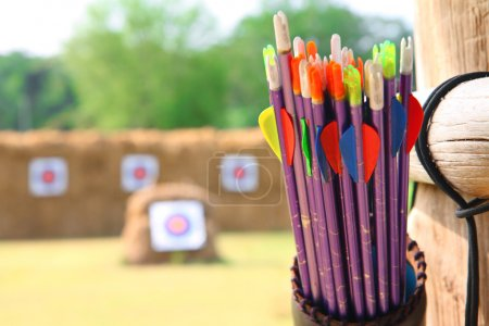 Arrows and target archery