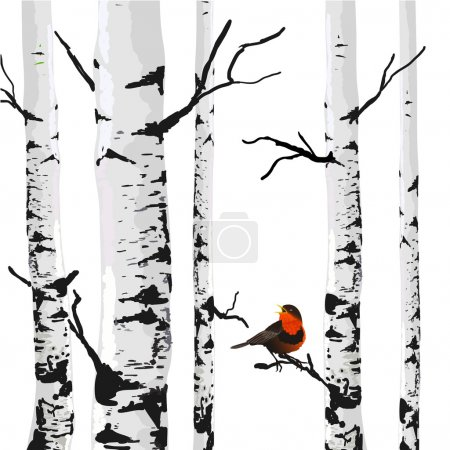 Bird of birches