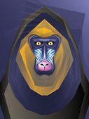Mandril Monkey Illustration