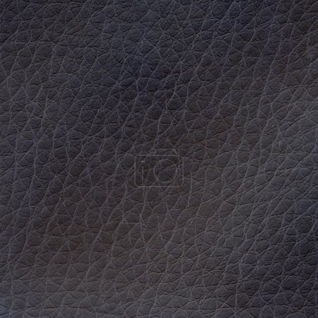 Photo pour Texture cuir noir - image libre de droit