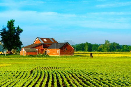 Photo for Farm building house,ideal for everything - Royalty Free Image