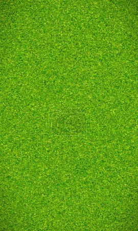 Photo for Beautiful green grass texture for football field - Royalty Free Image