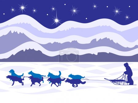 Musher and dog sled by moonlight vector