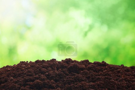 Photo for Balck soil over sunny nature background - Royalty Free Image