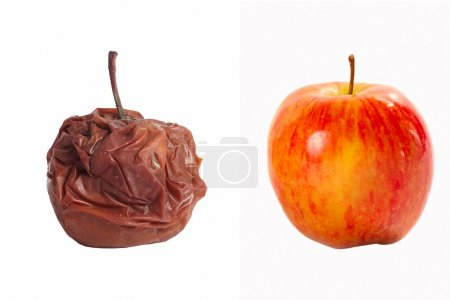 rotten apple and fresh apple