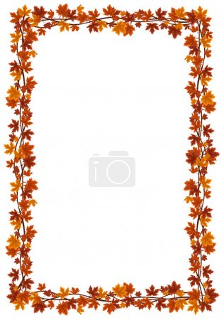 Autumn maple leaves frame Vector