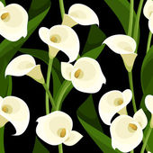 Vector seamless pattern with white calla lilies and leaves on a black background