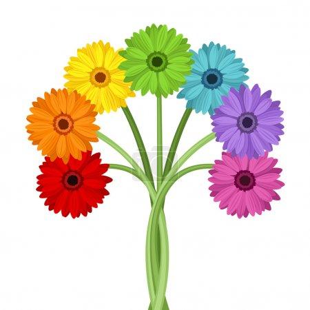 Illustration pour Bouquet vectoriel de fleurs de gerbera colorées isolées sur blanc . - image libre de droit
