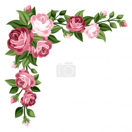 Illustration for Vector corner with vintage pink roses, rose buds and green leaves isolated on a white background. - Royalty Free Image