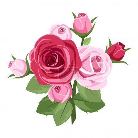 Illustration for Branch with red and pink roses, rose buds, and leaves isolated on a white background. - Royalty Free Image