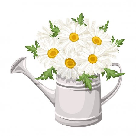 Illustration for Vector illustration of watering can with bouquet of white daisy flowers. - Royalty Free Image