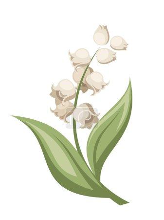 Лили, цветок долины. Векторная иллюстрация .