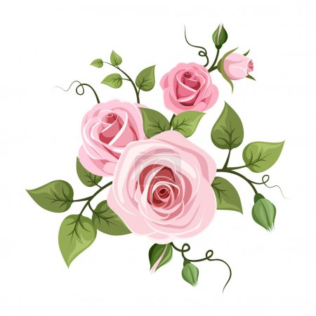 Illustration for Vector branch of pink roses with green leaves isolated, on a white background. - Royalty Free Image