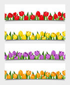 Vector banners with tulip flowers