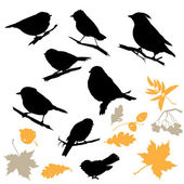 Birds and Plants Silhouettes isolated on white background