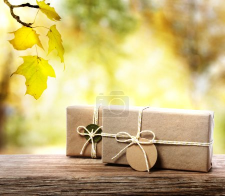 Handcrafted gift boxes with an autumn foliage background