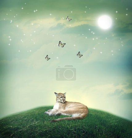 Cougar in fantasy hilltop with butterflies