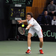Постер, плакат: Davis Cup 2013 Romania wins against Denmark final score 3:0