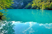 Emerald lake in Plitvice, Croatia
