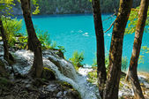 Lake in deep forest, Plitvice, Croatia