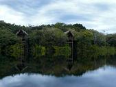 Wooden bungalow, Amazon river, Brazil