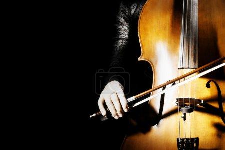 Cello classical musician cellist performer.