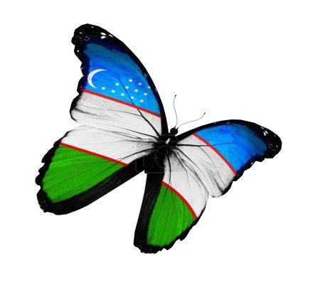 Uzbek flag butterfly flying, isolated on white bac...