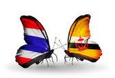 Dva motýli s příznaky Thajska a Brunej