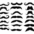 Mustache in a set on a white background...