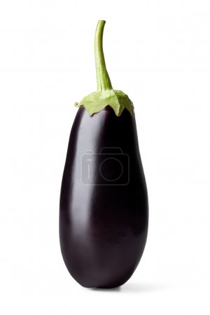 Fresh vegetable eggplant