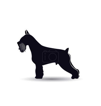 Schnauzer dog silhouette vector