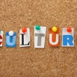 The word Culture in cut out magazine letters pinne...