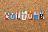 A kultúra szó