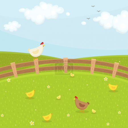Farm chicken family