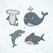 Dolphin shark whale