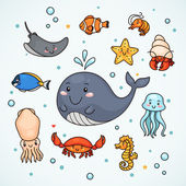 Cute sealife